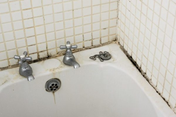 Если появился грибок в ванной комнате?